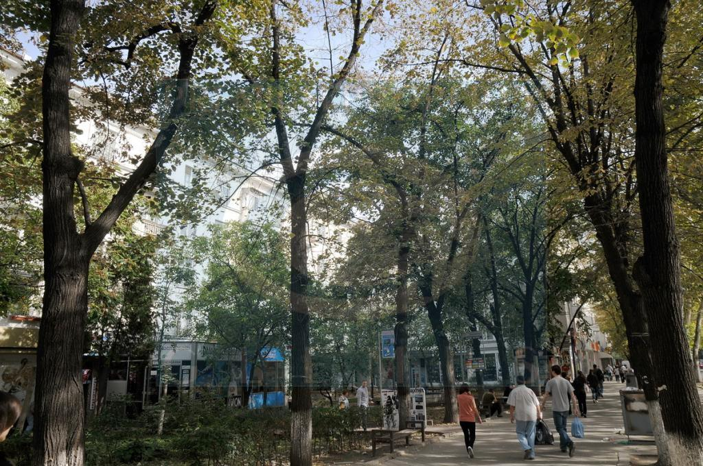 Apartment building on 64, Stefan cel Mare avenue